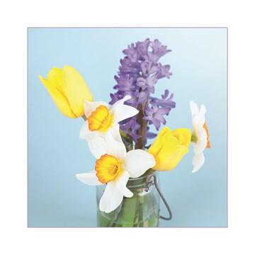 - voorjaarsbloemen