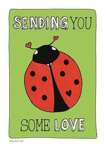 - een-lieveheersbeestje-met-de-tekst-sending-you-some-love