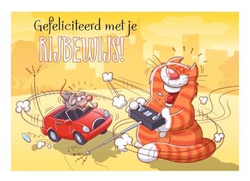 - kat-met-bestuurbare-auto