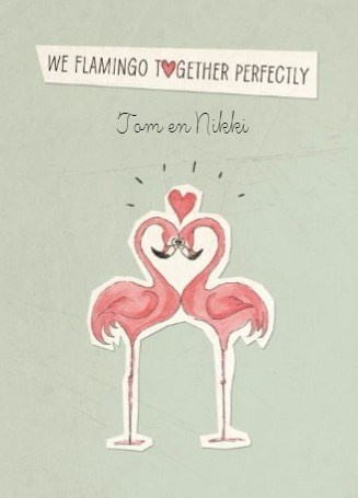 - valentijn-humor-flamingo-together