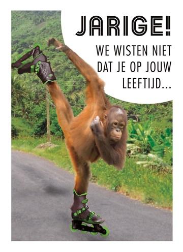 - een-skatende-aap