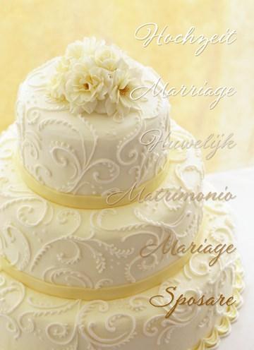 Hochzeitskarte - 61996FD8-8B44-4443-869E-8CBA86C34D44
