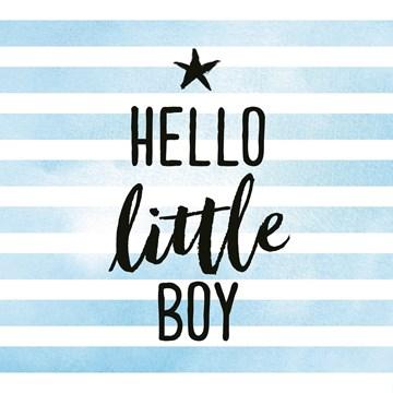 Geboortekaartje - baby-zoon-hello-little-boy