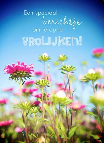 - bloemenveld-om-je-op-te-vrolijken