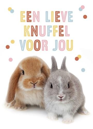 - konijntjes-een-lieve-knuffel-voor-jou