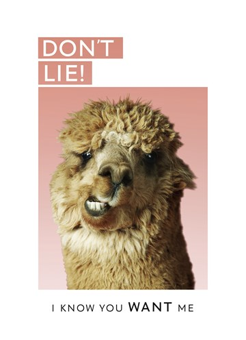 - i-know-you-want-me-alpaca