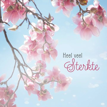 Condoleancekaart - roze-bloesem-takken