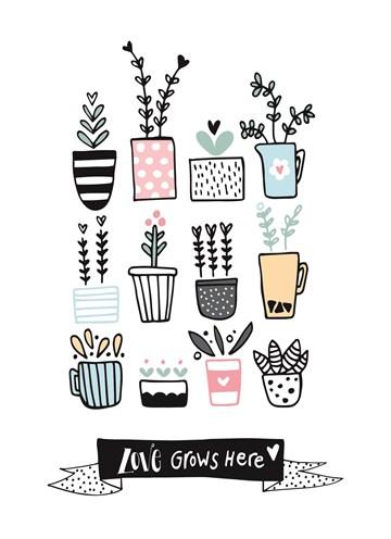 - planten-in-pot