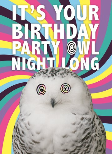 - party-owl-night-long