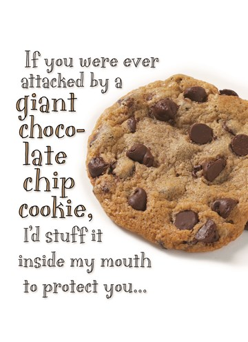 Shoebox-collectie kaarten - if-you-were-ever-attacked-by-a-giant-chocolate-chip-cookie-id-stuff-it-inside-my-mouth-to-protect-you