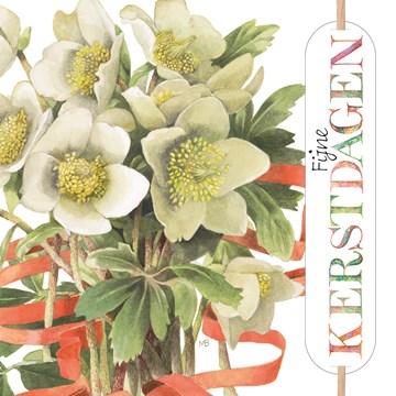 - xmas-marjolein-bastin-bloemen-fijne-feestdagen