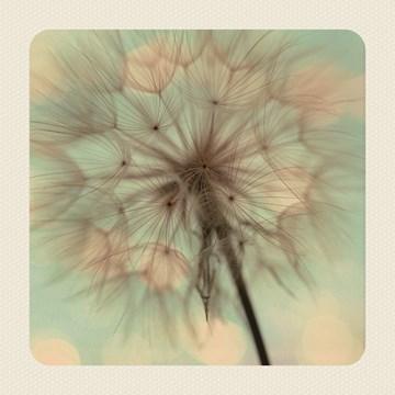 Deelnemingskaart - Rouwkaart - love-blooms-here