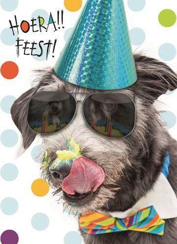 verjaardagskaart jongen - hoera-feest-hond-met-zonnebril