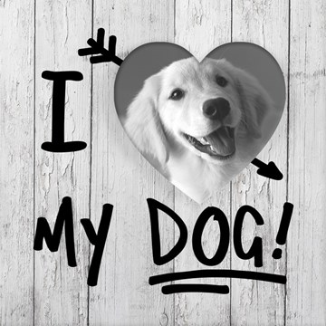 - fotokaart-i-love-my-dog-