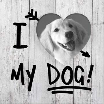- fotokaart-i-love-my-dog-