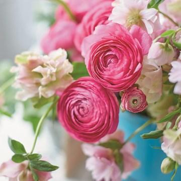 - roze-rozen-bij-elkaar