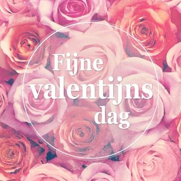 - fijne-valentijnsdag-met-mooie-rozen