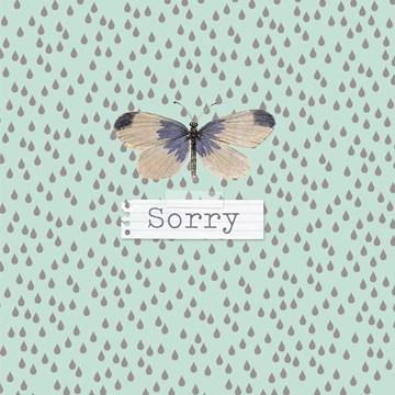 - vlinder-zegt-sorry