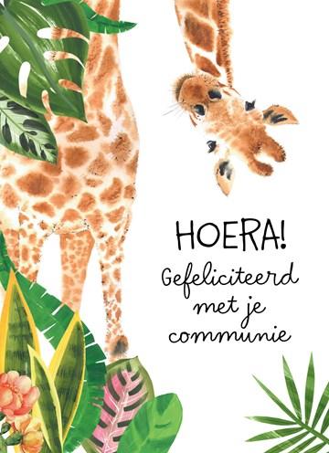 - Hoera-giraffe-gefeliciteerd-met-je-communie