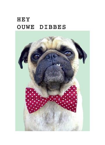 - pugs-hey-ouwe-dibbes