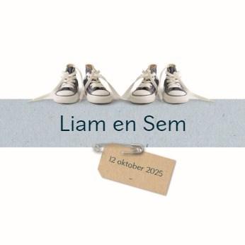 - vier-baby-schoentjes-blauw
