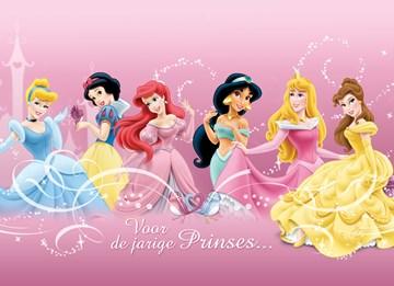 - alle-disney-prinsessen-voor-de-jarige-prinses