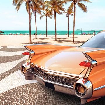 - auto-met-palmbomen