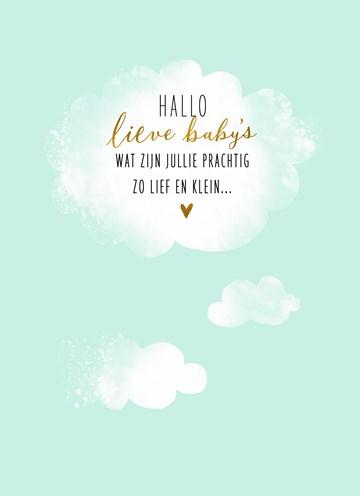 - babykaart-meerling-hallo-lieve-babys-groene-achtergrond