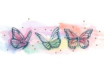 - 3-kleurige-vlinders