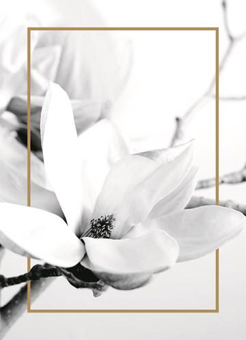 Deelnemingskaart - Rouwkaart - witte-bloem-met-goud-randje-