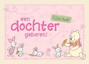 Disney kaart - knorretje-en-winnie-de-pooh-met-konijntjes