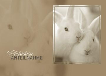 Trauer Karten - Trauer Grußkarte - FA9F2D8F-C5B8-4566-A66C-3A463118D772