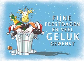 Funny Mail kaart - Kerstkaart-fijne-feestdagen