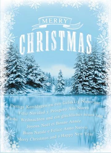 Kerstkaart - meertalige-ijsvlakte