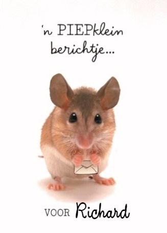 - opschoonactie-een-piepklein-berichtje-van-een-schattig-muisje