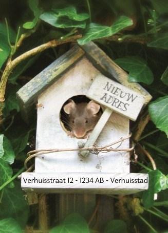 - verhuizen-nieuw-adres-vogelhuis