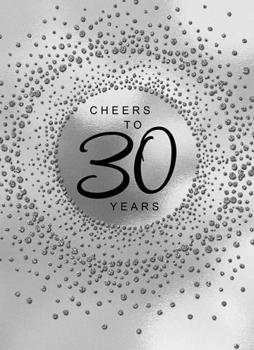 - Verjaardagskaart-leeftijden-Cheers-to-30-years-zilver