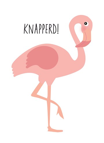 verjaardagskaart vrouw - flamingo-knapperd