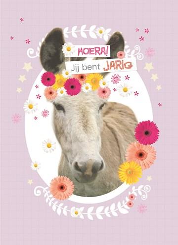 verjaardagskaart meisjes - prodo-dieren-ezel-jij-bent-jarig