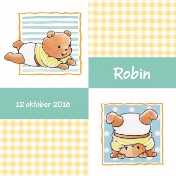 - geboorte-beertjes-geel-en-groen