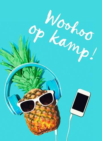 - woohoo-op-kamp-ananas