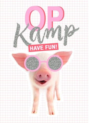 - Op-kamp-kaart-Biggetje-met-zonnebril-have-fun