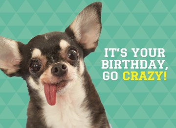Dierendag kaart - animal-fiesta-its-your-birthday-go-crazy