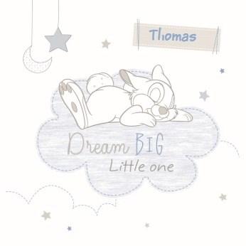 - dream-big-little-one