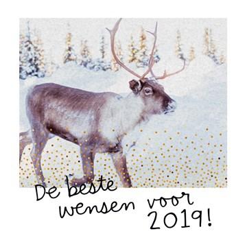 Nieuwjaarskaart - nieuwjaar-beste-wensen