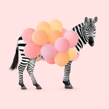 - zebra-meisje-met-ballonnen