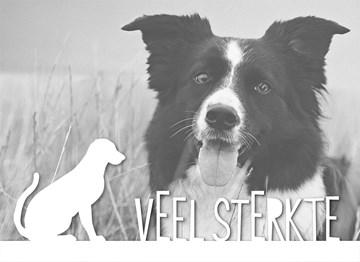 - fotokaart-veel-sterkte-verlies-huisdier-hond