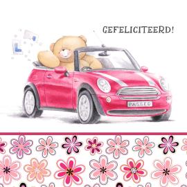 gefeliciteerd met uw nieuwe auto
